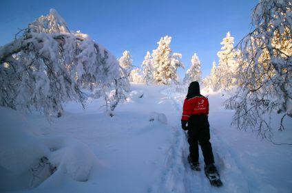 Aventure sami au lac Inari