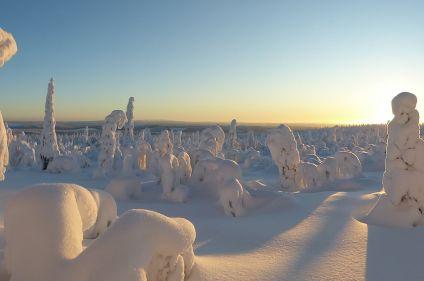 Aventure enneigée en Laponie sauvage