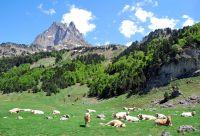 Randonnée bien-être dans la vallée de Campan