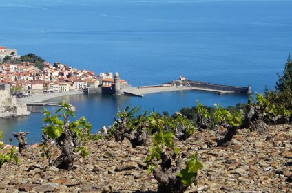 Nouvel an à Collioure