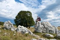 Le Jura grandeur nature