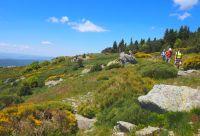 Monts d'Ardèche, le retour aux sources