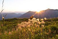 Les panoramas du Mont-Blanc