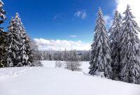 Nouvel an sur les crêtes du Jura