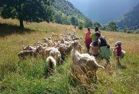 Les Pyrénées grandeur nature
