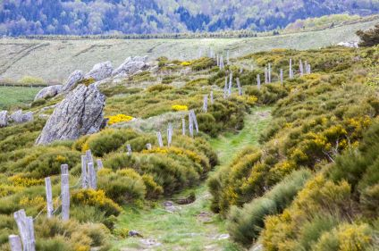Aventures et nature en Ardèche
