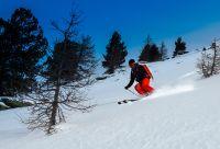 Découverte ski freeride - Grenoble