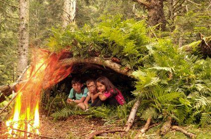 L'appel de la forêt en Hautes Pyrénées