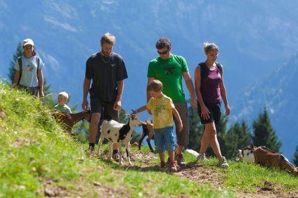 Multi-activités dans la Drôme