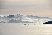 Banquise, baleines franches et traîneaux à chiens
