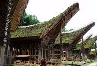 Bali, Sulawesi : de l'île des dieux au pays Toraja