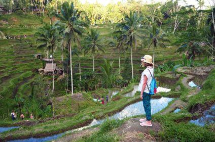 Un, deux, trois... soleils d'Indonésie !