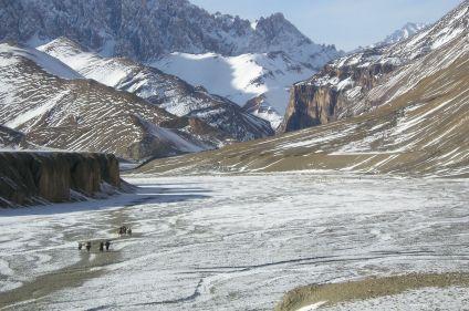 Hivernale du Changtang au Zanskar
