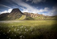 Islande : les incontournables