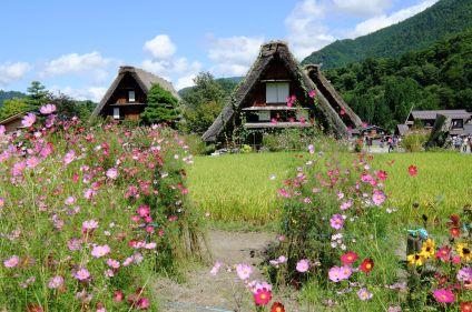 Le Japon des shoguns et des samouraïs