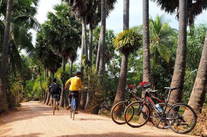 Entre temples et vallée du Mékong à vélo