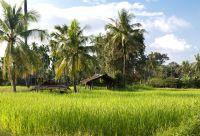 Balade lao