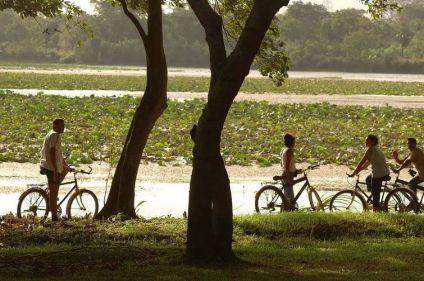 Le triangle culturel du Sri Lanka à vélo