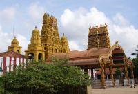 Le grand tour du Sri Lanka