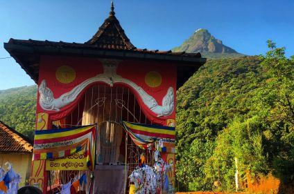Randonnée au Sri Lanka : objectif Adam's Peak