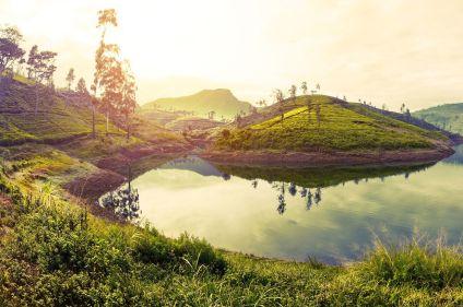 Sri Lanka : perle de l'océan Indien