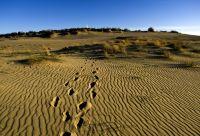 Parcs nationaux et patrimoine des Pays Baltes