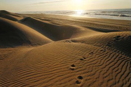 Des cimes du Toubkal aux dunes de l'océan