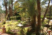 Entre jardins et Sahara