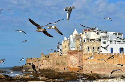 Charme et nature d'Essaouira et de sa côte sauvage