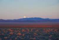 Grande traversée de la Mongolie