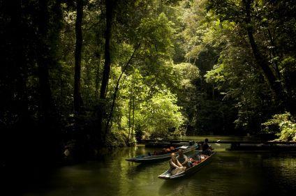 Sarawak, trésor caché de Bornéo