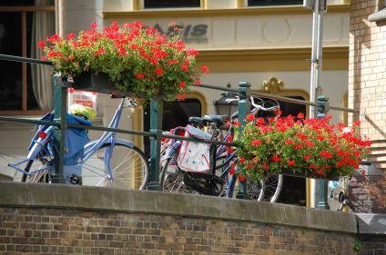 L'essentiel d'Amsterdam à vélo