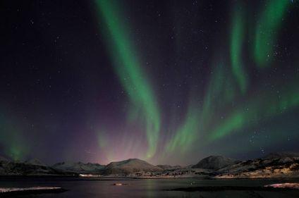 Baleines, orques et aurores boréales