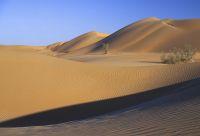 Oman : de l'eau, du sable et des hommes