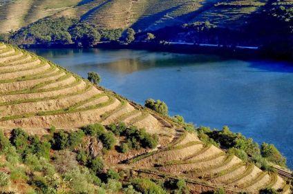 Porto et vignobles du fleuve d'or