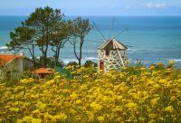 Portugal verdoyant : des montagnes à la mer