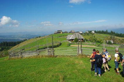 Carpates de Bucovine