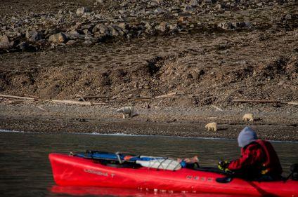 Kayak en baie du Roi
