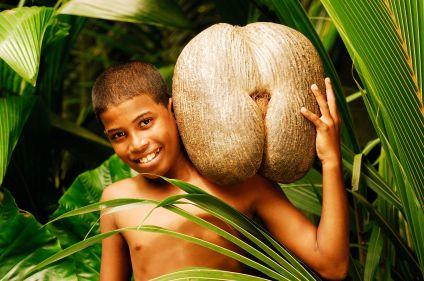 De Praslin à Mahé, à la découverte des Seychelles