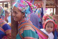 Hmongs fleurs et baie d'Halong