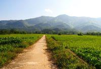 Haut Laos et nord Vietnam : territoires méconnus