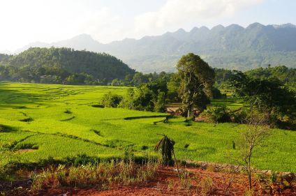 Rizières, pics karstiques et delta du Mékong