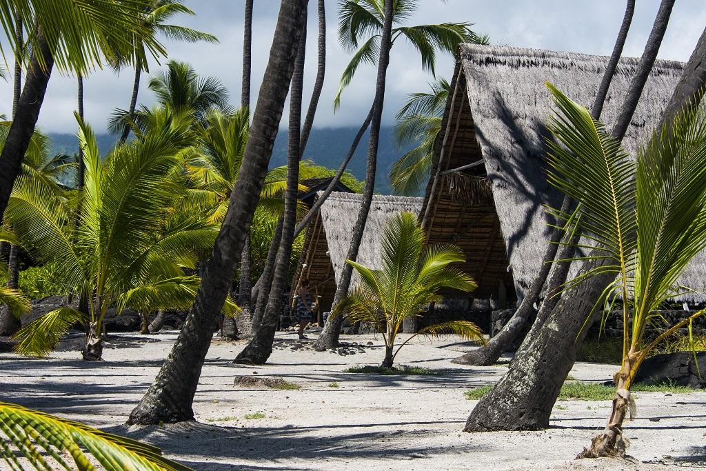 Refuge de Pu'uhonua rassemblait un sanctuaire irradiant le site de son mana, des maisons pour le chef et son entourage ainsi que des abris servant à l'intendance. - ©Solveig Placier