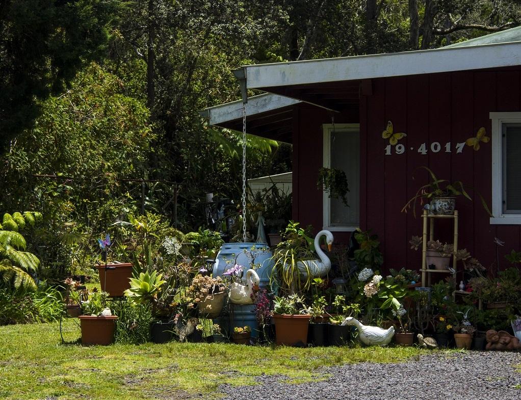 Au village de Volcano : ces coquettes maisons, situées à proximité immédiate du parc national des volcans, sur l'île d'Hawaï, ont été épargnées par les dernières éruptions - ©Solveig Placier