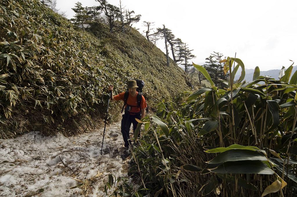 Randonnée vers le mont Ishizuchi (1982 m), Île de Shikoku