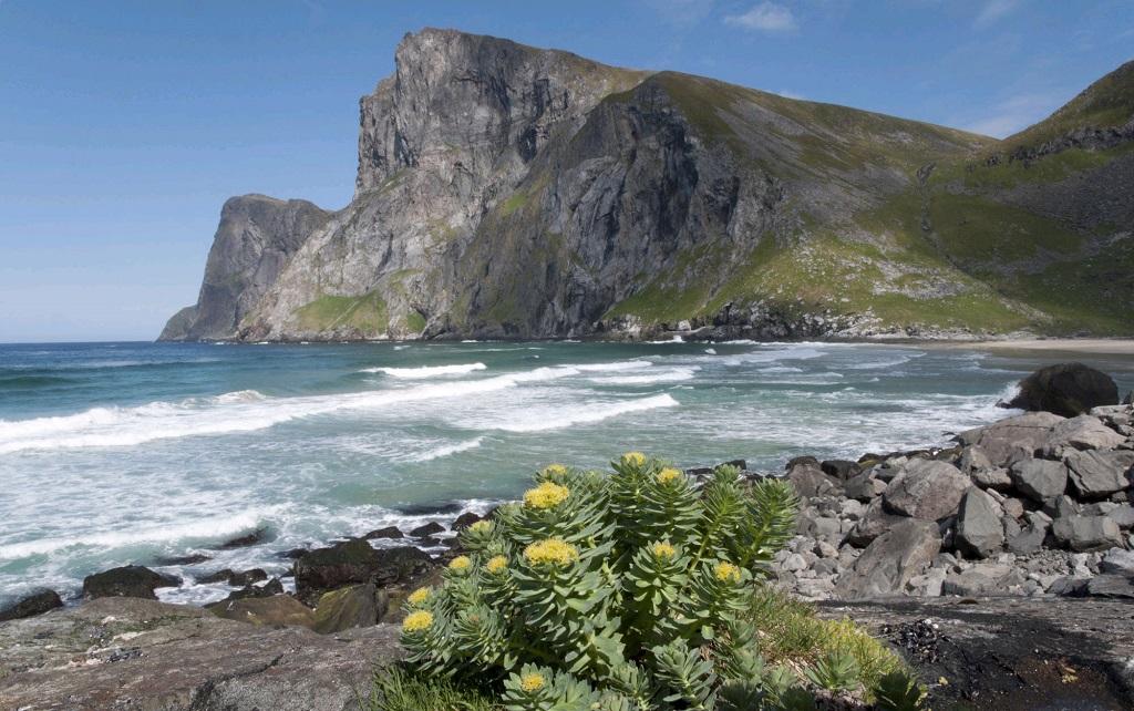 Archipel des îles Lofoten