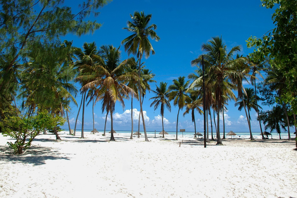 Plage près de Jambiani, à Zanzibar