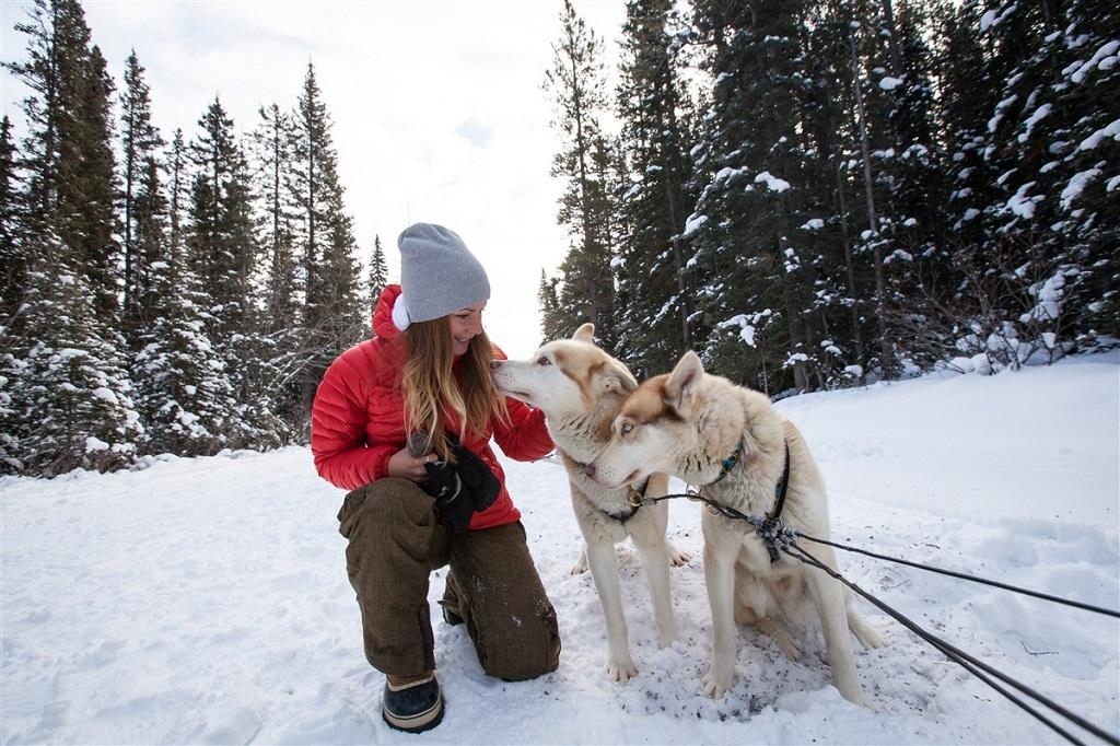 Moment partagé avec les chiens de traîneau - ©Canadian Tourism Commission