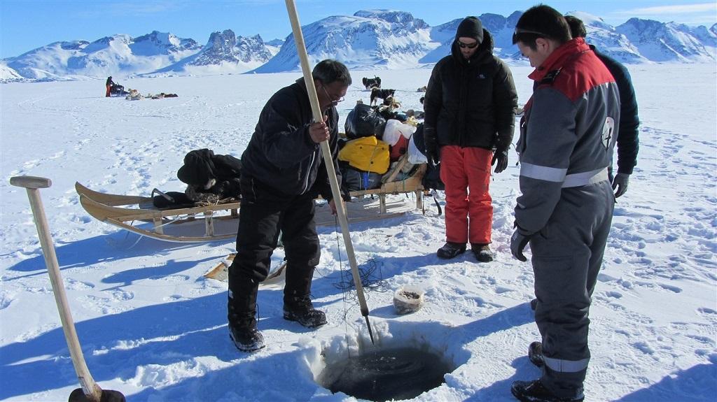 Expédition en traineau à chiens au coeur des Fjords de Sermiligaq, Groenland