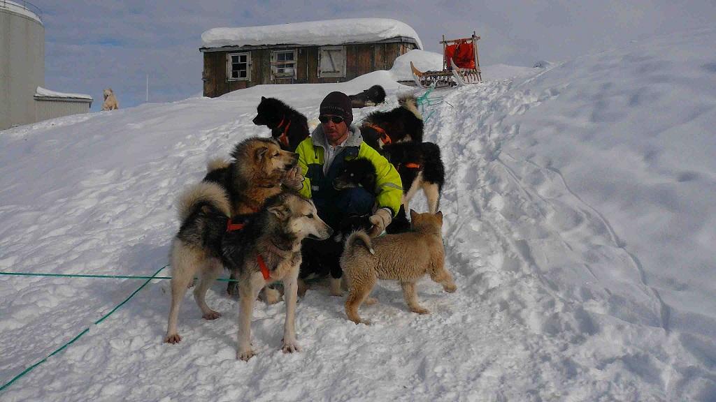 Toujours en compagnie de mes chiens de traineau - ©Michel Aubibert